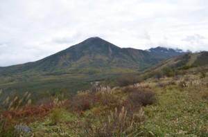 八子ヶ峰から見る蓼科山