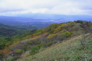 八子ヶ峰西峰の紅葉