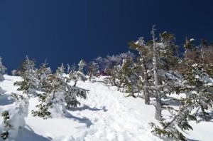 八ヶ岳北横岳 山頂の手前