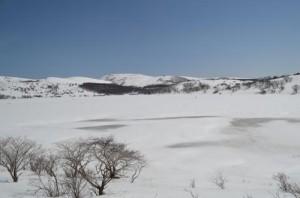 雪の八島ヶ原湿原