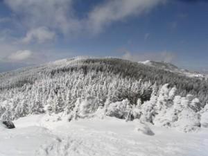 八ヶ岳縞枯山
