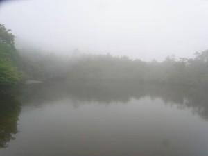 幻想的な七ッ池
