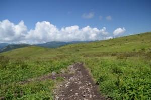 霧ヶ峰 物見岩へと続く道