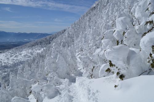 北横岳の登りと樹氷