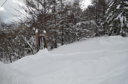 すずらん峠八子ヶ峰登山口