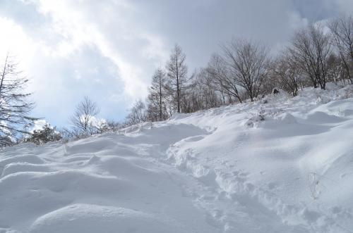 八子ヶ峰の登り 少し開けたところ