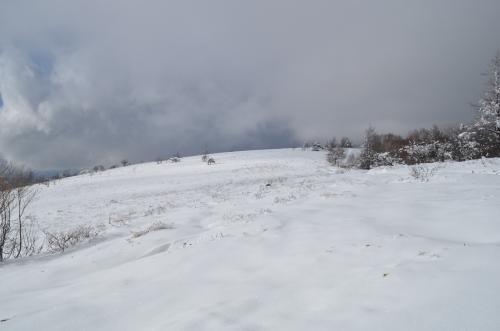 広い八子ヶ峰東峰山頂付近