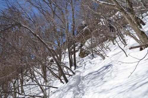 守屋山立石コース登山口付近