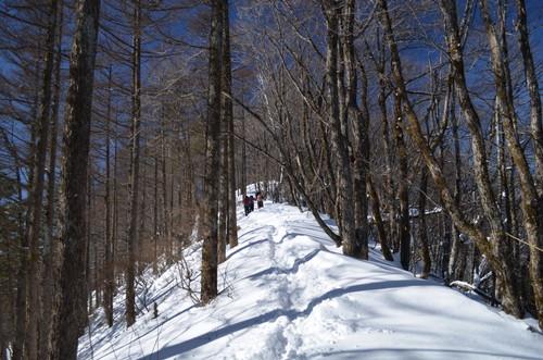 守屋山東峰から西峰へ向かう稜線