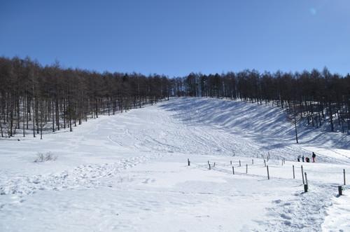 雪の入笠湿原