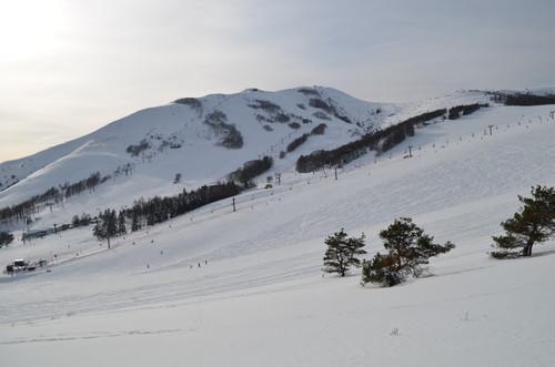 車山高原スキー場横の道