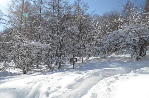 八子ヶ峰登山道入口