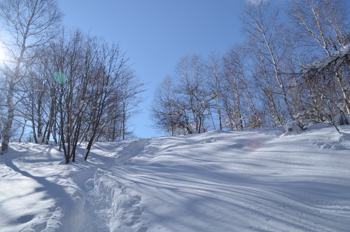 八子ヶ峰への登り