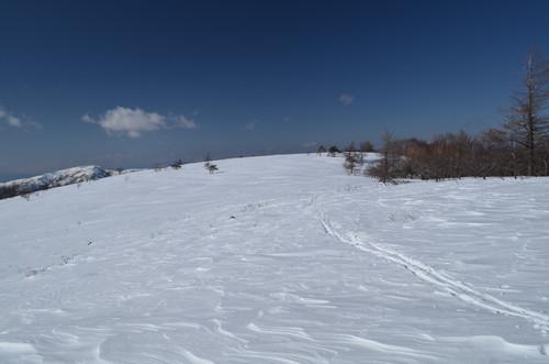 広い八子ヶ峰東峰山頂部