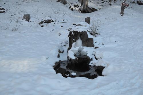 八ヶ岳西岳途中の不動清水