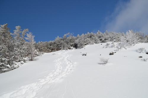 八ヶ岳西岳の景色が開けるところ