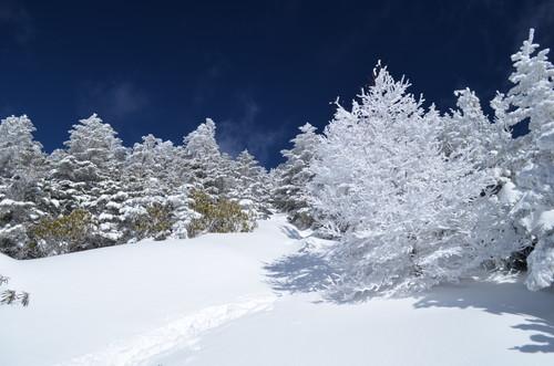 八ヶ岳西岳山頂が近い