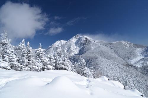 八ヶ岳西岳山頂から見た権現岳