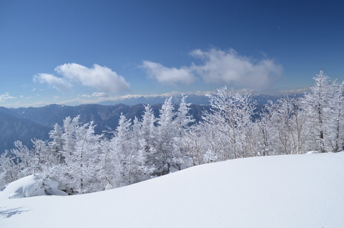 八ヶ岳西岳山頂から見た中央アルプス