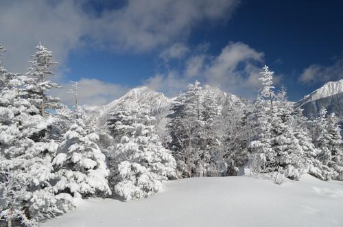 八ヶ岳西岳山頂から見た赤岳と阿弥陀岳