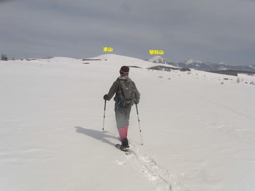 広がる雪原