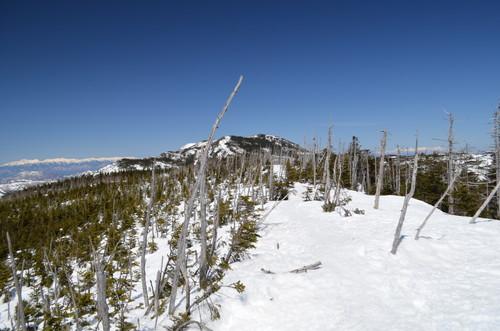 八ヶ岳縞枯山山頂