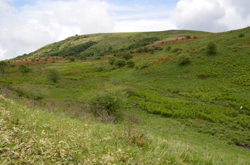車山湿原と車山