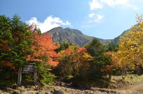 行者小屋周辺の紅葉と赤岳