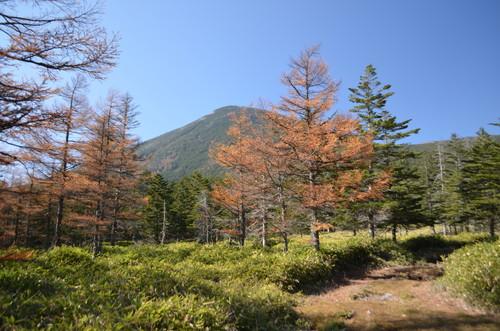 天祥寺原から見る蓼科山