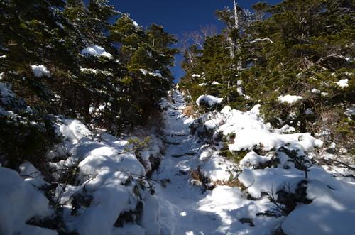 北横岳山頂直下