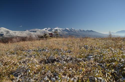 八子ヶ峰東峰山頂から見る八ヶ岳
