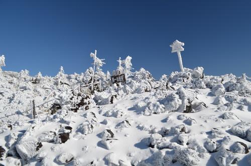 雪景色の坪庭