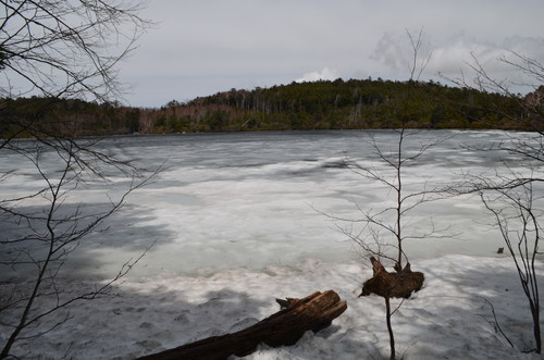 氷が残る白駒池