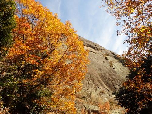 紅葉残る岩殿山