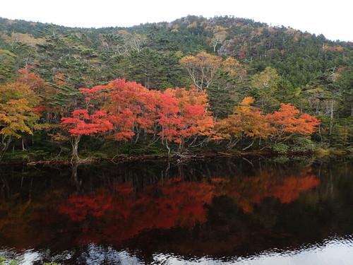 紅葉の七ッ池