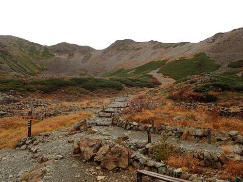 仙丈小屋前から見る仙丈ヶ岳