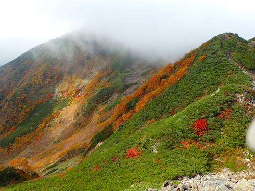 小仙丈カールの紅葉