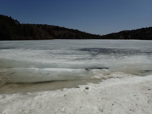 凍結中の白駒池