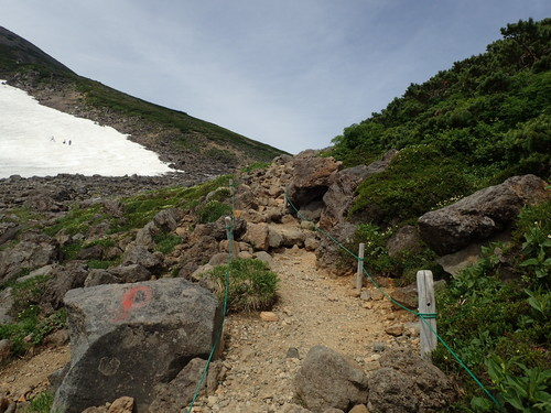 乗鞍岳大雪渓わきの登山道