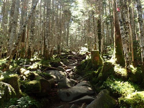 中山への登り