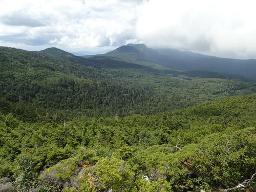 白駒池や茶臼山