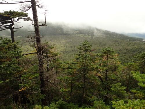 北横岳から見る縞枯山