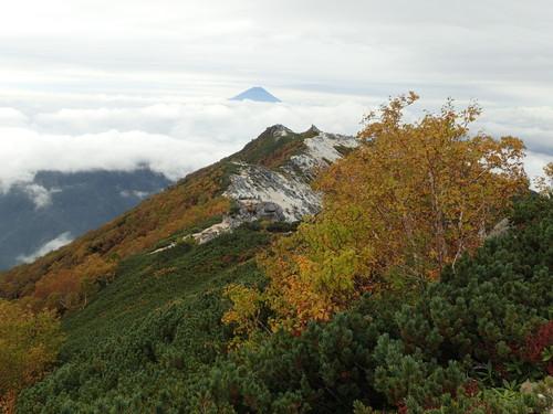 薬師岳と富士山