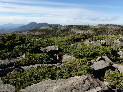 中山展望台から見る蓼科山