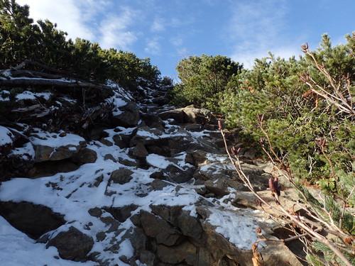 駒津峰付近のアップダウン