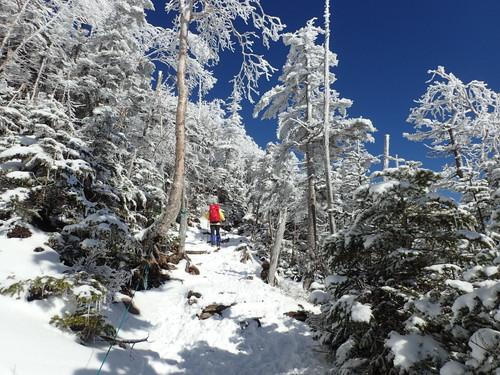 北横岳の登山道