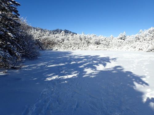 凍結した七ッ池