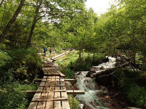 北沢の登山道